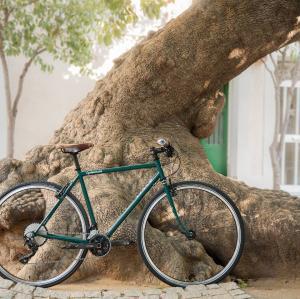 Bicicleto Rizzo Cyclointuitio - 04
